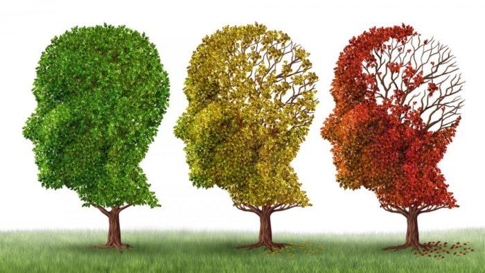 Invecchiamento cerebrale e demenza di Alzheimer